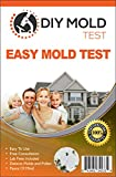 Product Image of the Mold Inspection Network DIY Test