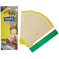 Growing Success Greenhouse Whitefly Traps, 7 Traps Per Pack
