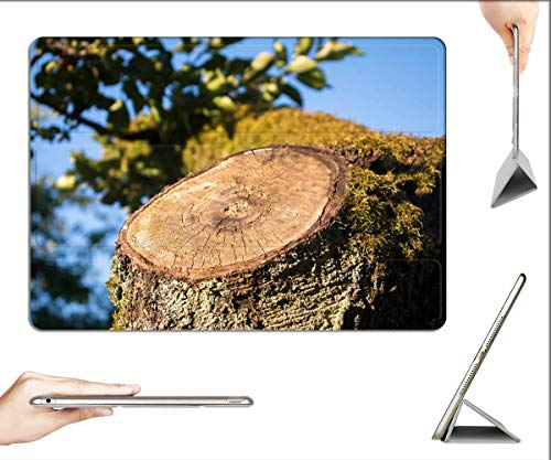 Case for iPad Pro 12.9 inch 2020 & 2018 - Aststumpf Tree Stump Sawed Off Tree Wood Forest