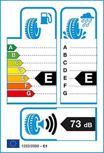 Roadstone g656849–225/75/R15102S–S/S/73db–Neumáticos de verano
