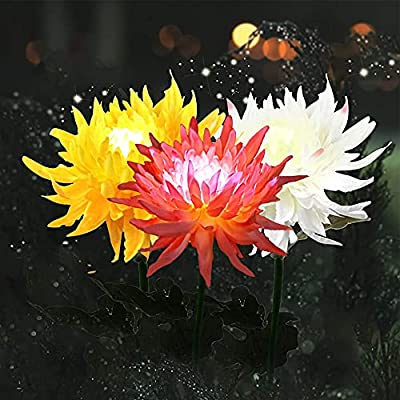 Outdoor Solar Garden Stake Lights, 3 Pack Solar Powered Chrysanthemum Flower Lights, Waterproof LED Solar Decorative Lights for Garden Pathway Patio Lawn Yard Porch Walkway (Yellow, Red, White)
