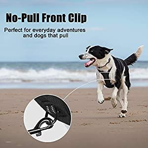 PoyPet No Pull Dog Harness, Reflective Vest Harness with 2 Leash Attachments and Easy Control Handle(Black, Medium)