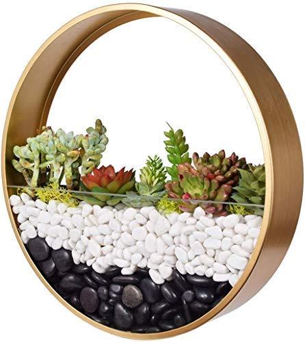 Fioriera sospesa a parete,supporto per piante rotondo in metallo Appeso Cesto di fiori Vasi da parete in ferro retrò Vaso da fiori innovativo terrario in vaso montabile per interno soggiorno Cucina