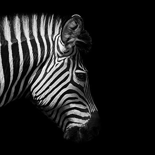 mmwin Moderno Minimalista Cebra Animal Sala de Estar Porche Lienzo Decorativo Pintura T 40x60cm