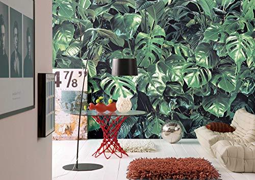Komar fotobehang kostbare in regenwoud design | voor keuken, posterbehang voor woonkamer, slaapkamer of badkamer | wandbehang in de grootte 368 x 254 cm | 8-333, groen