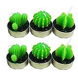 Rameng Lot de 6 Forme de Cactus Bougie Chauffe-Plat Non Parfumée Votives/Festives/...