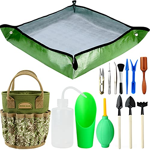 14 Pieces Succulent Tools Kit with Organizer Bag, Indoor Mini Garden Hand Tools Set with Carrier,Transplanting Tools Set with Tote for Bonsai Planter.Miniature Indoor Fairy Planting Care.(Honeysuckle)