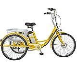 Tricycle Adulte vélo électrique à 3 Roues vélo à Assistance électrique avec Panier de Panier arrière Panier de Nourriture Sortie Shopping 48V12ah Scooter pédale électrique 24 Pouces Unique