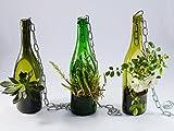 Maceta suculenta hecha de botella de vino – 2 plantas.