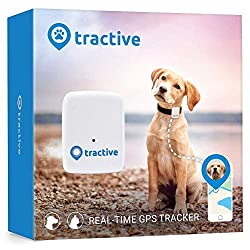 What is the Best GPS System for Tracking Your Dog? | 5 GPS Dog Trackers 11