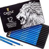 Castle Art Supplies Lot de 12 crayons de dessin en graphite haute qualité avec étui en étain. Lot...