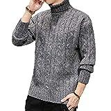 Hombres Suéter Básico, Tortuga Cuello Grueso Suéter De La Torcedura Punto Casual De Punto Sudadera