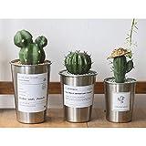 Jenghfnifer Macetas Juego de 3 Estilo nórdico Cactus Cubo Taza de Acero Inoxidable Oficina de Escritorio Planta Maceta Simple decoración del hogar (Color : Chrome, Size : 3 Set)