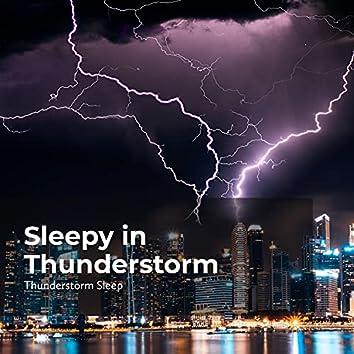 Sleepy in Thunderstorm