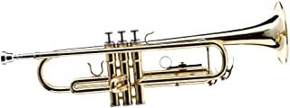 Hawk WD-T311 Bb Trumpet با Case و Mouthpiece ، برنج لاک
