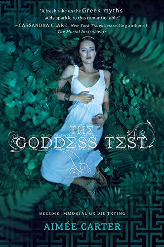 Image of The Goddess Test