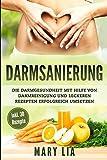 Darmsanierung: Die Darmgesundheit mit Hilfe von Darmreinigung und leckeren Rezepten erfolgreich umsetzen