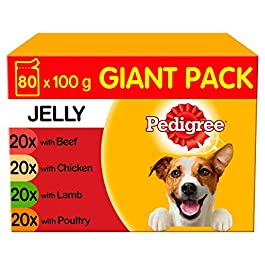 Pedigree Dog Pouches Mixed Selection in Jelly Mega Pack, Chicken, 0.1 kg