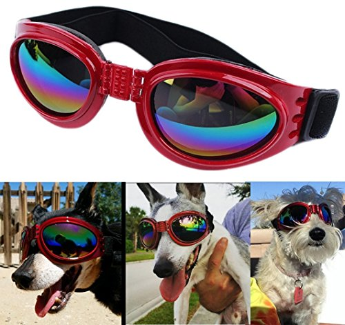 QUMY Dog Goggles Eye Wear Protection Waterproof Pet Sunglasses for Dogs About Over 15 lbs (Red)