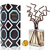HOUZZ Interior Coconut & Vanilla Bean Reed Diffuser Oil and Scent Sticks Gift Set - Coconut, Lily of the Valley, Cedar and Vanilla Home Fragrance - No Sulfates or Parabens - Made in the USA