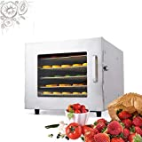 Best NEW Food Dehydrators - 600W Stainless Steel Electric Food Dehydrator Machine With Review
