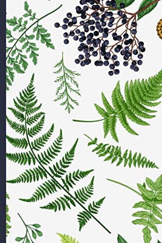 Notebook: Botanical illustration (ferns, elderberry & butterfly)