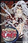 Demon Slayer: Kimetsu no Yaiba, Vol. 22 (22)