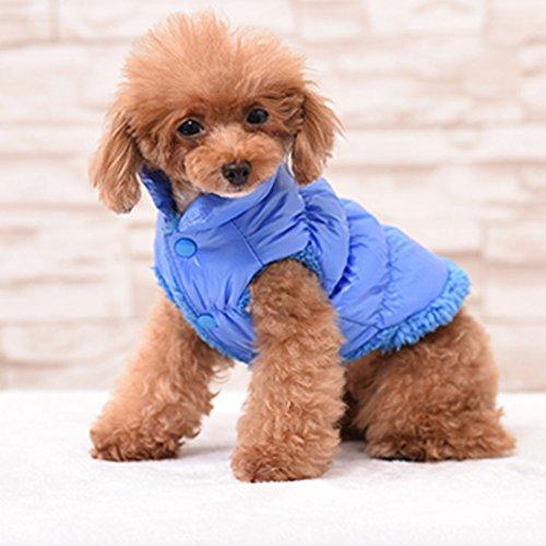 Rantow Herbst Winter Haustier Hund Katze kleidet warmen unten Mantel, 7 Farben klassisches Haustier Outwear Daunenjacke für Teddy, Yorkshire Terrier, Chihuahua, Pommern (S, Blue)