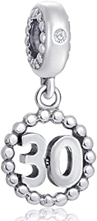 16,17,18,19,20,21,22,30,40,50,60 Number Bracelet Charms, 925 Sterling Silver Pendants Beads Fit Pandora Charm Bracelets, Necklace, Dangling Dangle Charm for Birthday