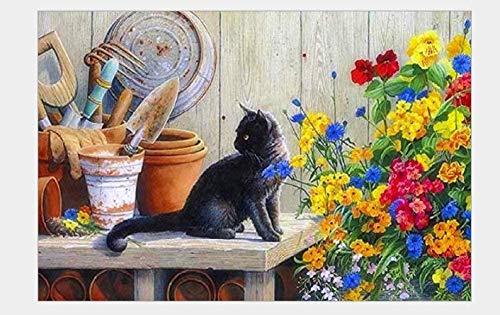 Jkykpp Paint By Cijferset voor volwassenen, huisdieren, tuingereedschap en katten, zwart, bedrukt, met kwast en acrylframe, pigment van hout, 40 x 50 cm