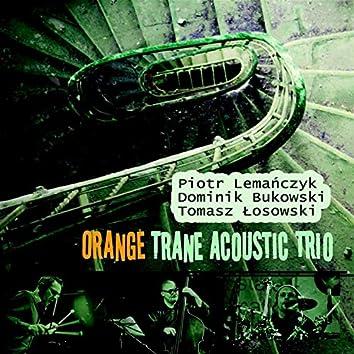 Piotr Lemańczyk - Orange Trane Acoustic Trio