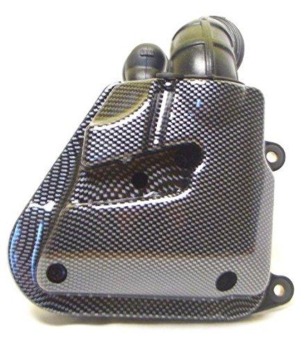 Luftfilter Box, Luftfilterkasten Carbon Look Adly, Aprilia SR50, MBK Nitro, Yamaha Aerox