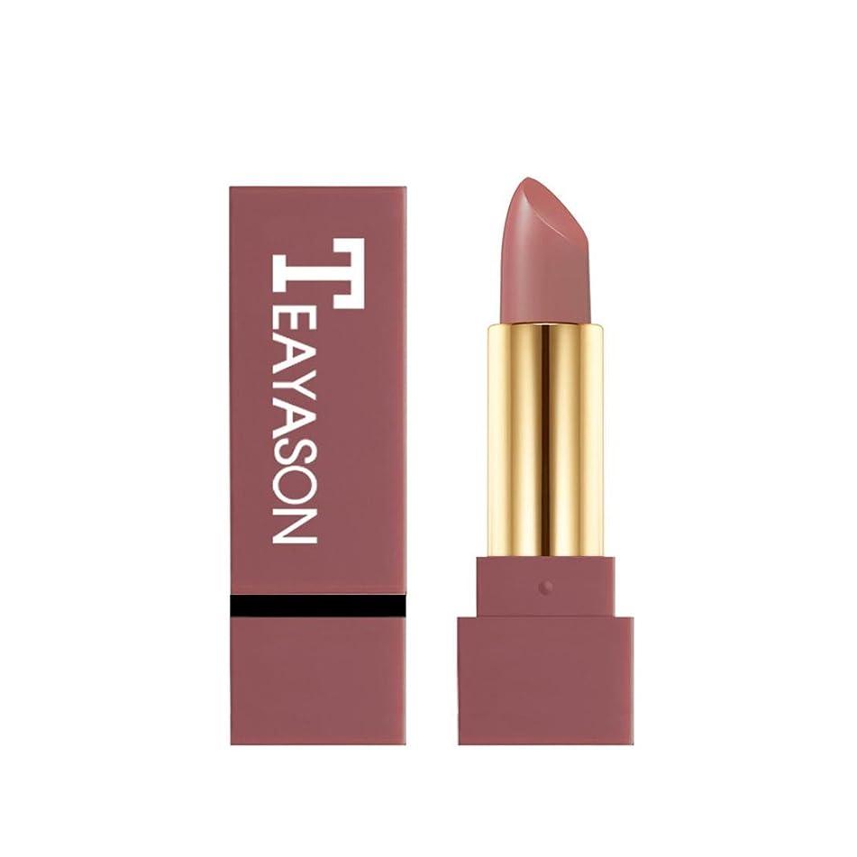 Mr.Macy Lipsticks Make Up,Waterproof Long Lasting-Mini Matte Lipstick Set-Liquid Colorstay Organizer-3ce Red Lipstick