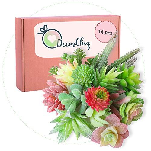 Artificial Succulent Plants - 14 Unpotted Authentic Looking Faux Plants - Face Succulent Plants for Everlasting Joy