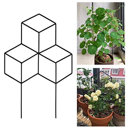 fasloyu Garden Metal Trellis, Garden Plant Support, Potted Plant Growing Support for DIY Potted Climbing Plants Support, Flower Vegetables Rose Vine Pea Ivy Cucumbers (15.7' W X 23.6' H)