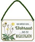 """Blechschilder Lustiger Spruch """"Hier wächst kein Unkraut Das ist Begleitgrün"""" Deko Schild für Garten oder Terasse Geschenkidee für Gärtner 18x12 cm"""