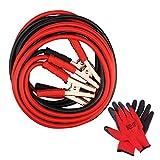 Câbles de démarrage robustes Dhoutdoors pour voiture, camionnette, camion avec gants de travail (800 A - 6 m de long)