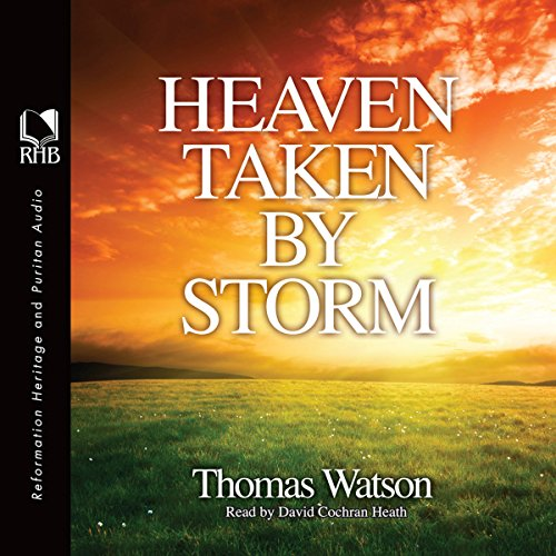 Heaven Taken by Storm audiobook cover art