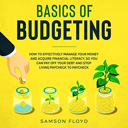 Couverture de Basics of Budgeting