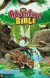 NRSV, Adventure Bible, eBook