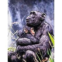 ダイヤモンド絵画類人猿猿抱きしめる絵モザイクダイヤモンド刺繡リビングルームの動物の壁画(40X50CM)