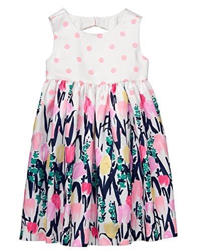Gymboree Baby Girls Sleveless Floral Print Dress, Petal Pink dot, 3T