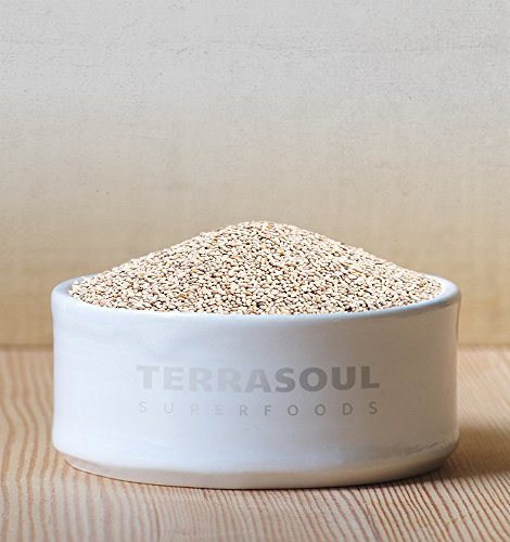 Terrasoul Superfoods Organic White Chia Seeds, 16 Oz - Omega Fats | Fiber | Plant Protein…