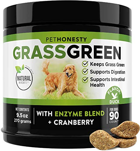 PetHonesty GrassGreen Grass Burn Spot Chews for Dogs - Dog Pee Lawn Spot Saver Treatment Caused by Dog Urine - Cranberry, Apple Cider Vinegar, DL-Methionine Grass Treatment Rocks - 90 Chews (Duck)