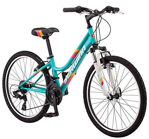 Schwinn High Timber Youth/Adult Mountain Bike, Steel Frame, 24-Inch Wheels, 21-Speed, Teal