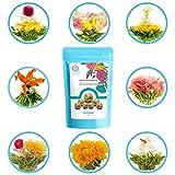 TETWIN Blooming Tea Gift Set, Natural Flowers Hand Tied with Green Tea Leaves, Beautiful Flowering Tea Balls Quality Reusable Gift Set (8 Varieties)