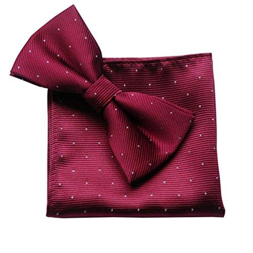NiSeng Pajaritas Con Pañuelo Lunares Corbata & Pañuelo Elegante Pajarita Paisley Matrimonio Fiesta Boda Lazo para Hombres