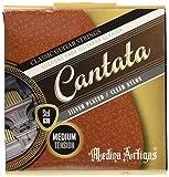 Medina Artigas  クラッシックギター弦 630