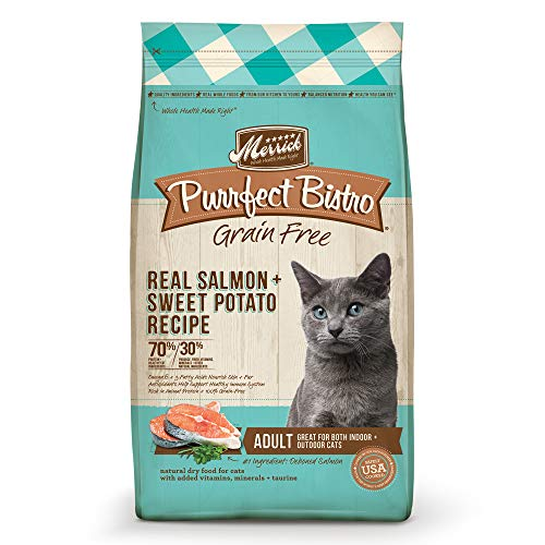 Merrick Purrfect Bistro Grain Free Dry Cat Food Healthy Adult Salmon Recipe