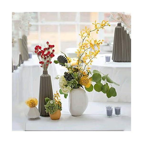 XHXSTORE 20pcs Flores Secas Gypsophila Ramo de Flores Natural Otoño Bolas de Craspedia Rojo para Decoración Ramo de Boda…